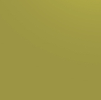 Зелёный лимон 304